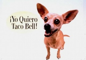 Taco Bell Chihuahua